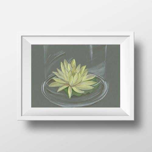 Lotus by Ahoo Maher