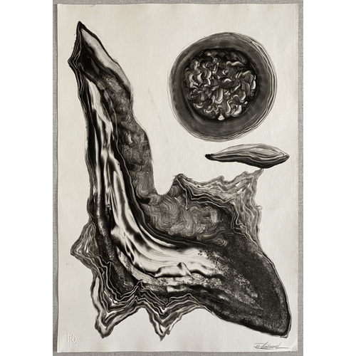 Untitled by Rafael Plaisant