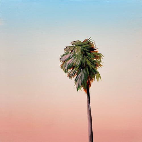 Blue Palm Sunset by Kristin Moore