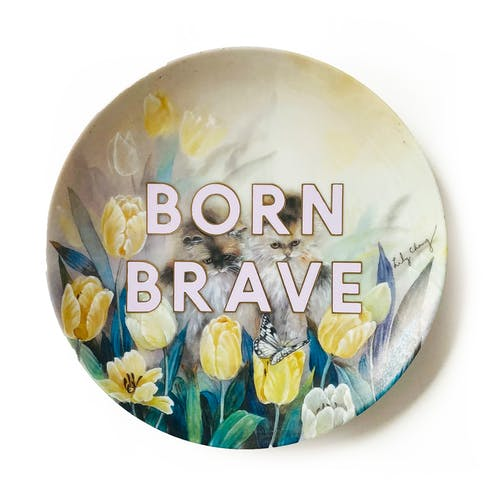 Born Brave by Maggie Hall