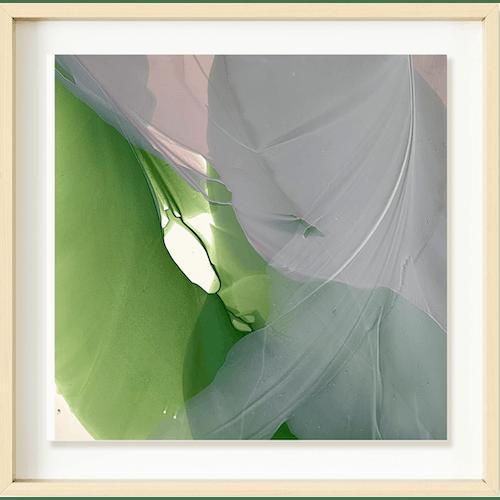 Magnolia by Marina Savashynskaya Dunbar