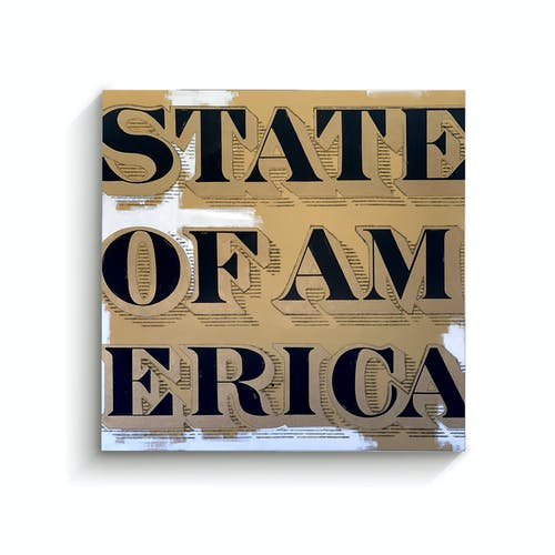 State of America by Chris McCrae