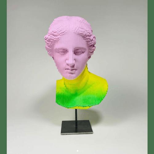 Illusion Venus II by Daniele Fortuna