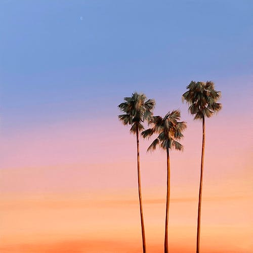 West Coast Sunset by Kristin Moore