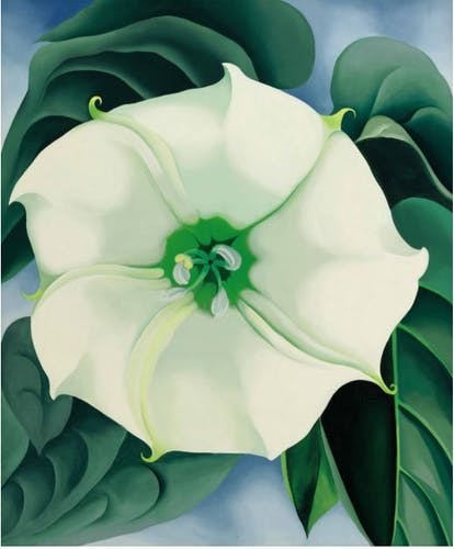Georgia O'Keeffe, Jimson Weed/White Flower No. 1, 1932.