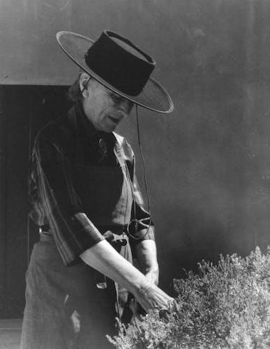 Georgia O'Keeffe in her garden.
