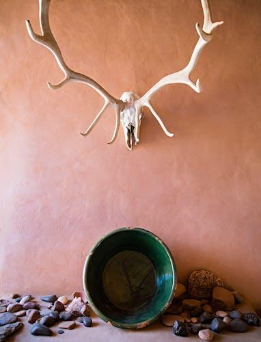 A skull and rocks detail inside the home of Georgia O'Keeffe.