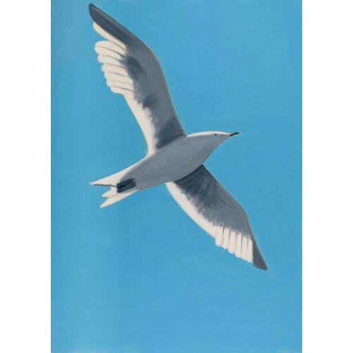 Image: Seagull by Alex Katz
