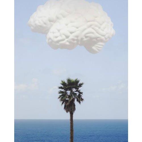 Image: 'Brain/Cloud' by John Baldessari